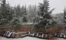 المنخفض الجوي يضرب البلاد وإغلاق جبل الشيخ