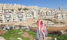 المخابرات الفلسطينية تحبط صفقة لتسريب أراض للمستوطنين