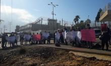 """""""تحالف النساء للسلام"""" يدعو للاستمرار بدعم النضال الفلسطيني"""