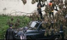 مدغشقر: مصرع 29 شخصا واضرار لأكثر من 100 ألف آخرين