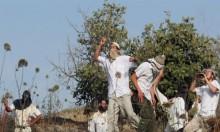 فرق للمستوطنين لرصد ولملاحقة المتظاهرين الفلسطينيين