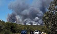 سيدني: إنقاذ 200 شخص في حرائق غابات