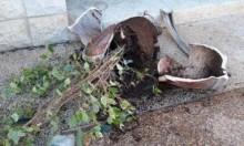 أم الفحم: اعتداء وتخريب في بساتين الخيام