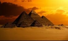 """""""منصوراسوروس شاهينا""""... اكتشاف حفرية ديناصور في مصر"""