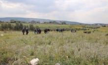 الزبارقة يدعو إلى تصعيد النضال لحماية أراضي الروحة