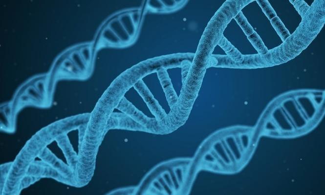 علماء ينتجون بويضة كاملة النمو مختبريًا