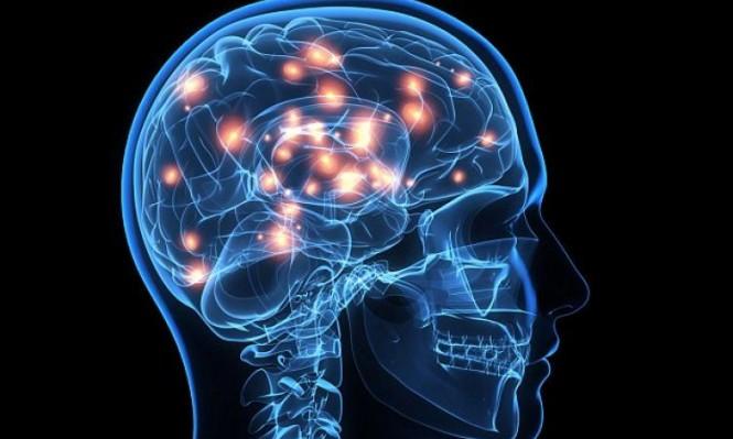 دراسة: قصر القامة في الصغر قد يزيد احتمال الإصابة بالسكتة الدماغية