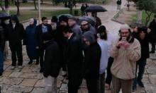 عشرات المستوطنين يقتحمون الأقصى ومفتي مصر يستنكر