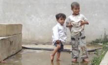 اليمنيون يُصارعون الملاريا وحمّى الضنك