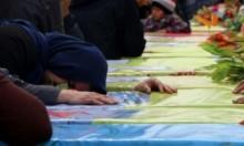 سورية: مقتل 14 عنصرا من قوات النظام في قصف تركي
