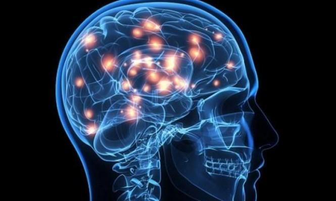 دراسة لمعرفة رحلة الدماغ بعد الموت