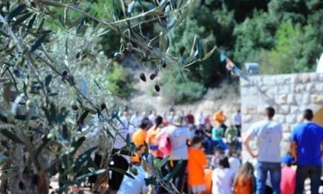 """دالية الكرمل: """"أم الشقف"""" مُهددة بالمصادرة"""