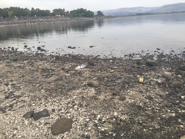 افتتاح موسم السباحة مبكرًا وتحذيرات من المخاطرة والغرق