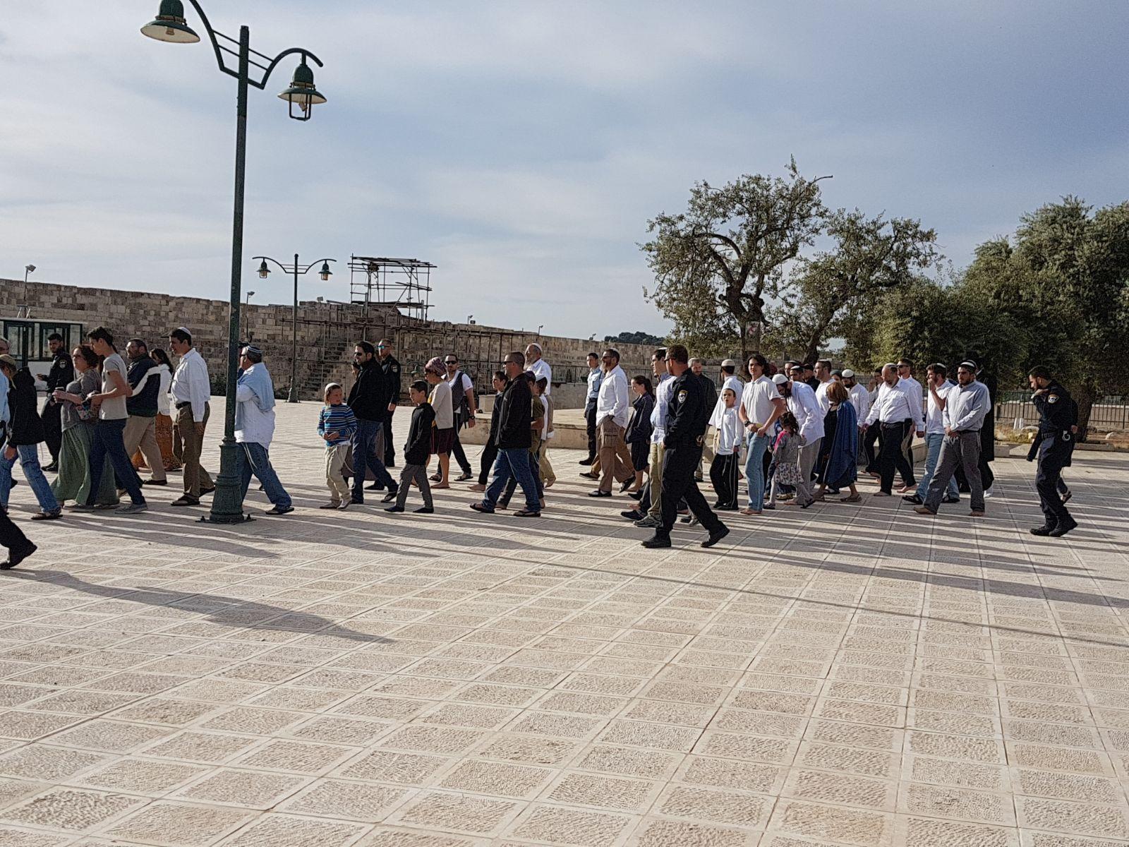 """275 مستوطنا يقتحمون الأقصى بثاني أيام """"الفصح العبري"""""""