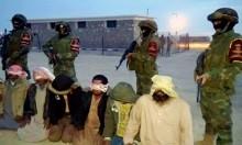 مقتل 4 مسلحين وتوقيف 252 آخرين بسيناء