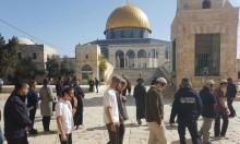 """مستوطنون يهتفون """"شعب إسرائيل حي"""" خلال اقتحامهم للأقصى"""