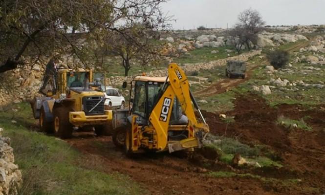 الاحتلال يدمر مئات أشجار الزيتون بالأغوار