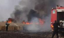 طائرة ورقية حارقة أطلقت من غزة تشعل النيران بأحراش جنوبي البلاد