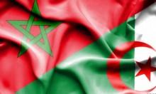 الجزائر تتطلع لتخفيض التمثيل الدبلوماسي مع المغرب