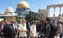 93 مستوطنا يقتحمون الأقصى والاحتلال يحجبه عن الفلسطينيين