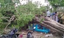 الهند: ارتفاع عدد ضحايا العواصف الرملية والصواعق