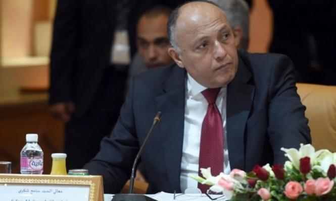 شكري: مشاركة قوات مصرية بقوات عربية مشتركة بسورية وارد
