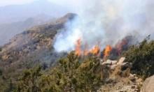 """طائرات ورقية تشعل النيران بأراض بمستوطنات """"غلاف غزة"""""""