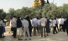 مئات المستوطنين يقتحمون الأقصى اعتقالات ومواجهات بالضفة