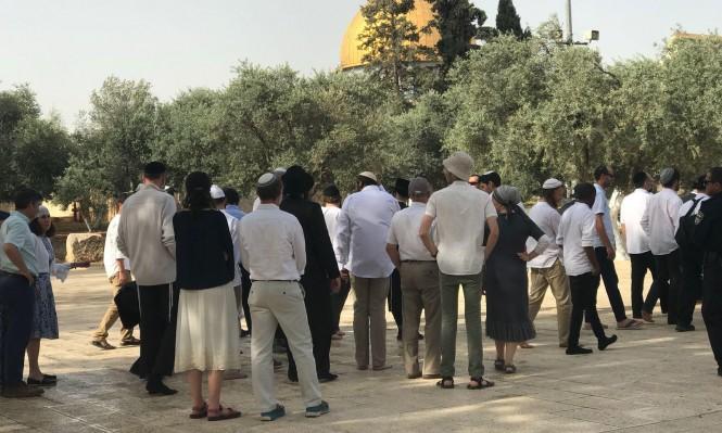ازدياد اقتحامات اليهود للأقصى بعد إعلان ترامب