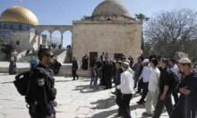 مستوطنون يقتحمون الأقصى والاحتلال يقيد دخول الفلسطينيين