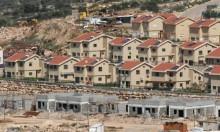 """""""تأجير أراض"""" للمستوطنين: مخططات استيطانية سرية للبناء دون مناقصات"""