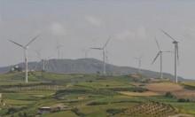 صناعات الطّاقة المتجدّدة ترفع عدد العاملين بها