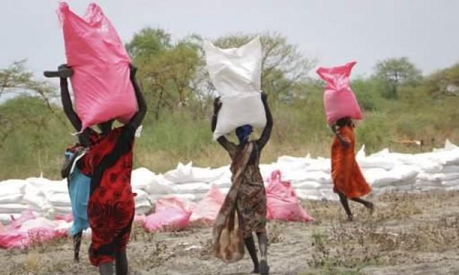 مجلس الأمن يمدد العقوبات على جنوب السودان