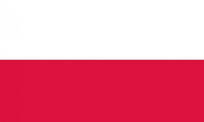 مونديال 2018: بطاقة منتخب بولندا