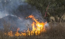 الطائرات الورقية تشعل الحرائق مجددا في محيط قطاع غزة