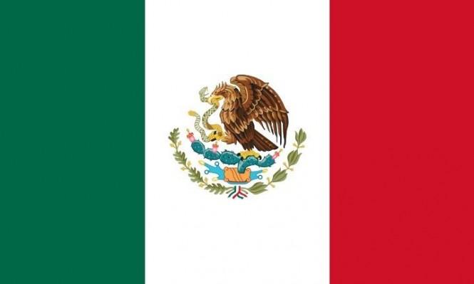 مونديال 2018: بطاقة منتخب المكسيك
