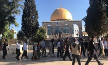 90 مستوطنا يقتحمون الأقصى واعتقالات بباب الأسباط وشعفاط