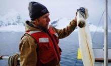 النفايات البلاستيكية في القطب الجنوبي تكشف حجم التلوث العالمي