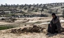 د. منار حسن: تدمير الحاضرة الفلسطينية جعل المرأة حبيسة الحيز الريفي