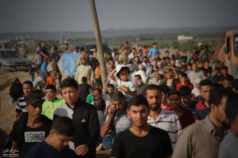 ارتفاع عدد مصابي غزة اليوم إلى 206