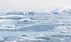 الاحتباس الحراري يرفع مستوى سطح البحر ويهدد وجود البطاريق