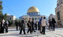 134 مستوطنا يقتحمون الأقصى والاحتلال يشدد إجراءاته ضد المقدسيين