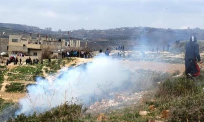 نابلس: مستوطنون يحرقون 300 شجرة زيتون
