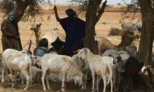 مالي: مقتل 32 مدنيا وفقدان عشرة آخرين