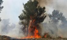 """إطفاء الاحتلال: حرائق القدس الأخيرة """"عمل متعمّد"""""""