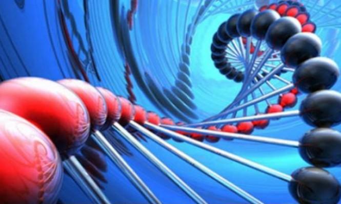 تقنية حديثة تساعد في رصد تطور جينات الحيوانات المختلفة