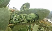 """الصبار """"كانفاس"""" فلسطيني للوحات أحمد ياسين"""