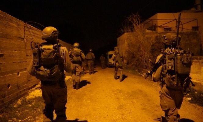 الاحتلال يعتقل 7 فلسطينيين ويقتلع 350 شجرة بالضفة