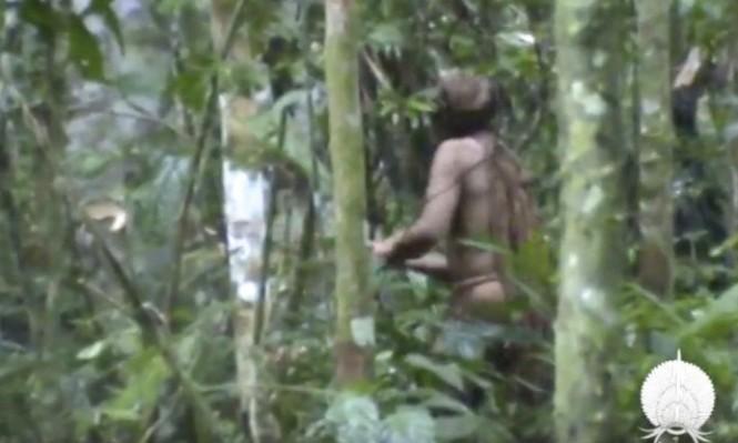 العثور على رجل يعيش في الغابة وحيدًا منذ 22 عامًا