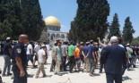 مستوطنون يواصلون اقتحام الأقصى ودعوات فلسطينية للنفير للقدس